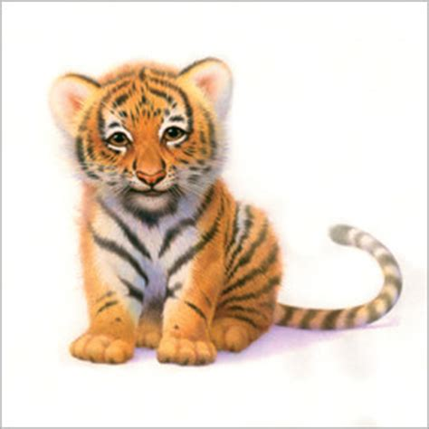 Tiger prints & posters from £6