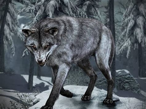Call of Duty: Ghosts for PS4, PS3, and PC gets Wolf Skin