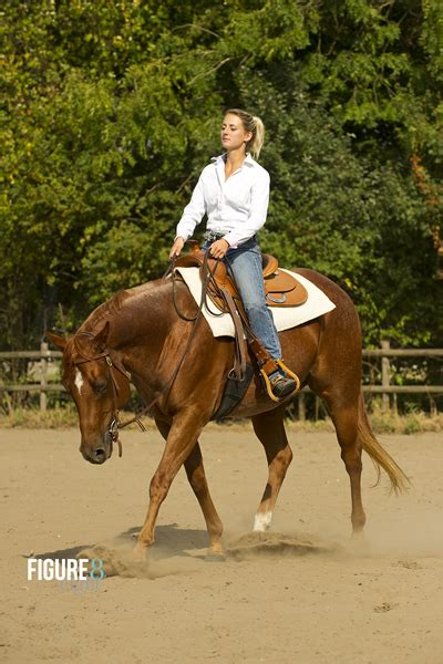 About me - AR Western Horse Training